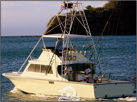 Picture of Shotgun Sportfishing Charter