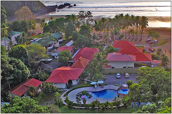 Aerial view of Blue Macaw on Jaco Beach