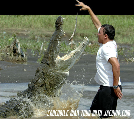 Man Feeding Crocodile